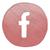 iconfacebook klein